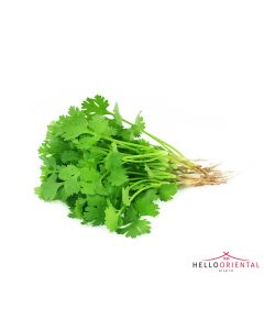 FRESH CORIANDER (BUNCH) 新鲜香菜